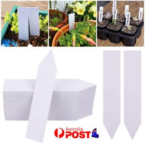 200pcs Plastic Plant Flower Labels Tags Garden Home Decor Marker Tool 5cmx1cm AU