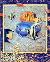 Tropical Exotic Ocean Fish Bathroom Wall Decor Picture Art Print (8x10)