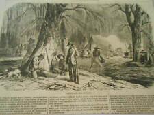 Gravure 1857 - L'extraction du sucre de l'érable