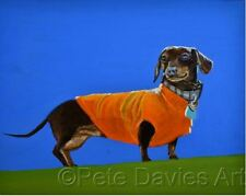 PETE DAVIES ORIGINAL Cocoa in her Racing Colour dog dachshund hound OIL PAINTING