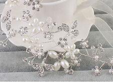 Argento Floreale Vino Sposa Aureola in Perline di Cristallo Copricapo Abito da
