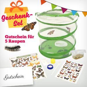 Butterfly-Garden-Set, aus Raupen echte Schmetterlinge züchten,(15000)
