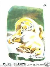 CARD BON POINT Ours blanc Ursus maritimus Polaire Polar bear 60s