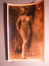 Altes Akt Foto / Erotik um 1950 / Schöne Frau ganz nackt im Wald / Prachtweib
