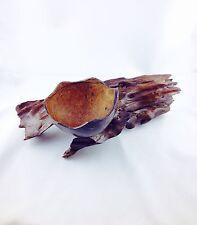 Schale oder Aschenbecher aus Kokosnuß (als Dekoration/Handarbeit)