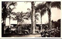 Real Photo Postcard Mission Cliffs Garden Park in San Diego, California~134133