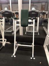 Hammer Strength Body Weight Leg Raise - Vertical Knee Raise VKR Exercise Machine