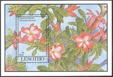 Lesotho 1993 Desert Rose/Fiori/Piante/NATURA 1v M/S ref:s5537