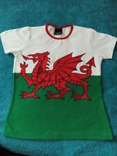 Wales Flag Welsh Dragon Patriotic Support Sport Boys Unisex Kids Child T Shirt