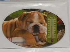 Kühlschrankmagnet mit Thermometer - Englische Bulldogge English Bulldog - NEU