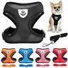 Breathable Cat Mesh Collar Pet Harness Vest Dog Leash For Chihuahua Pug Bulldog