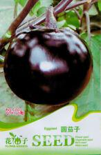 1 Pack 30 Purple Round Eggplant Seeds Aubergine Melongena Organic C003
