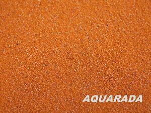 Artemia Eier entkapselt 100ml Aufzuchtfutter Aquarium Zierfischfutter