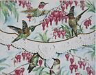 For Art Sake E1 Carol Wilson Garden Cards  Envel Hummingbirds Portfolio NCP2508
