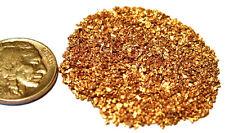 ALASKAN YUKON BC NATURAL PURE GOLD NUGGETS #20 MESH .5 GRAMS