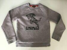 Roberto Cavalli Boys Jumper Sweater Grey Tiger Age 10 Years Long Sleeve