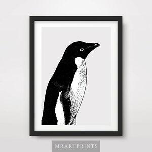 PENGUIN ART PRINT POSTER Animals Artic Black White Birds Decor Illustration