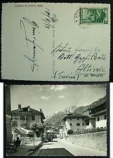 1951   Auronzo di Cadore  animata , viaggiata