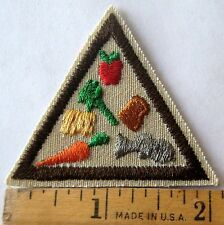 Retired Girl Scout Brownie GOOD FOOD TRY-IT Nutrition Apple Fish Badge Patch