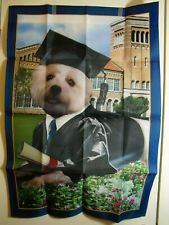 Willabee & Ward Outdoor Graduation Flag Small White Dog Wearing Cap And Gown