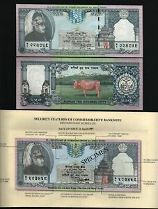 NEPAL 250 RUPEES P-42 1997 King Commemorative COW UNC BANKNOTE + FOLDER CURRENCY