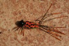 1/16 oz ( Orange Zebra ) # 4 sickle or a Mustad 32889 Lite hook ( 6 pk )