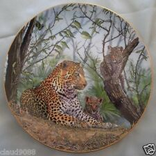 "Royal Doulton ""Big Cats And Young A Shady Spot"" P458188 Boxed Mint In Box"