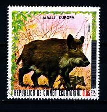 EQUATORIAL GUINEA - GUINEA EQUATORIALE - 1976 - Cinghiale