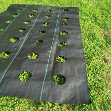 Weed Block Mulch Landscape with planting hole 3'x12' SOIL EROSION CONTROL