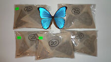 100 MORPHO DIDIUS UNMOUNTED **ARTWORK A1 A-- CONDITION PERFECT QUALITY**