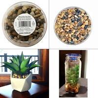 5 lbs. river pebbles in storage jar