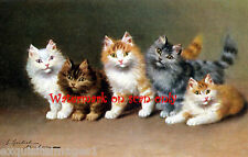 Antique Art~S. Sperlich~Five Spunky Kittens~ New Lge. Note Cards