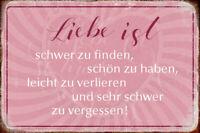 Liebe ist ... Blechschild Metallschild Schild gewölbt Metal Tin Sign 20 x 30 cm