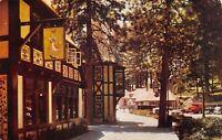Lake Arrowhead California~Street Scene~Shops Along Sidewalk~On a Float~1949 Cars