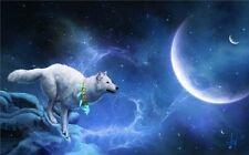 """White Wolf Highlands Wild Nature Animals Poster 21x13""""  W03"""