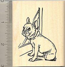 French Bulldog by window rubber stamp J9315 WM bull dog