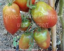 Purple Russian Tomate tomaten Para Verano Corto 10 Semillas
