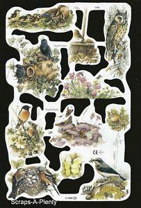 Nests Birds Squirrels 1776 Mamelok Embossed Scrap Die Cut Marjolein Bastin