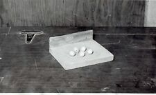 1949 Original Photo eggs of budgerigar parakeet at breeding facility in Michigan
