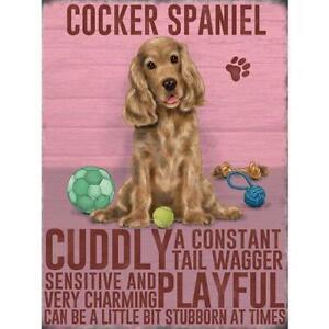 Brown Cocker Spaniel Magnet Gift - Premium Gifts For Cocker Spaniel Lovers