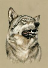 WILDLIFE  *  FAUNA   ** WOLF    **  A4     LIMITED   PRINT # 1
