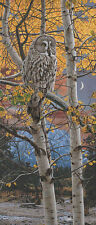 """""""Shades of Grey"""" Rod Frederick Limited Edition Giclee Canvas - Great Grey Owl"""