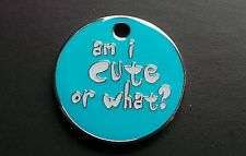 'AM I CUTE OR WHAT?' PET TAG FOR YOUR BEST FRIEND - ENGRAVED/POSTAGE FREE