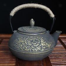 bouilloire en fonte de style japonais durable tetsubin théière pot de thé