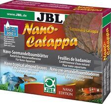 Jbl Nano Catappa-Almendras deja la curación de la India