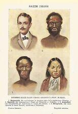 A6512 Razze umane secondo il Prof. Huxley - Stampa Antica 1930 - Cromolitografia