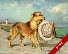 DOG CARRYING A LIFEBOUY SOAP BOX AD AT HARBOR ART PAINTING PRINT ON REAL CANVAS
