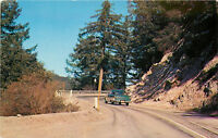 Chrome Postcard CA Scenic View ca1950s Car Mount Wilson Highway Roadside F533
