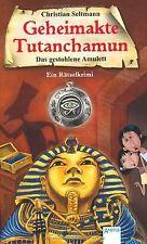 Das gestohlene Amulett: Geheimakte Tutanchamun. Ein Räts... | Buch | Zustand gut