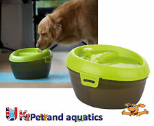 Dog Drinking Fountain 6L, Fresh Water Drinking Fountain With Dental Care